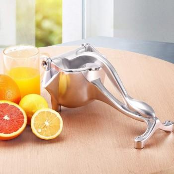 Press fruit juicer